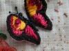dernier papillon 003