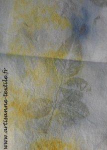 împression de feuilles par éco-print2