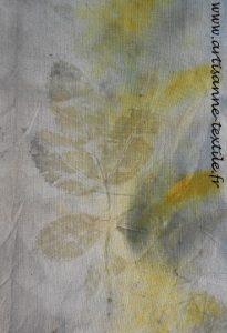 împression de feuilles par éco-print3