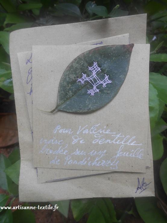 Point kutch sur feuille d'arbuste