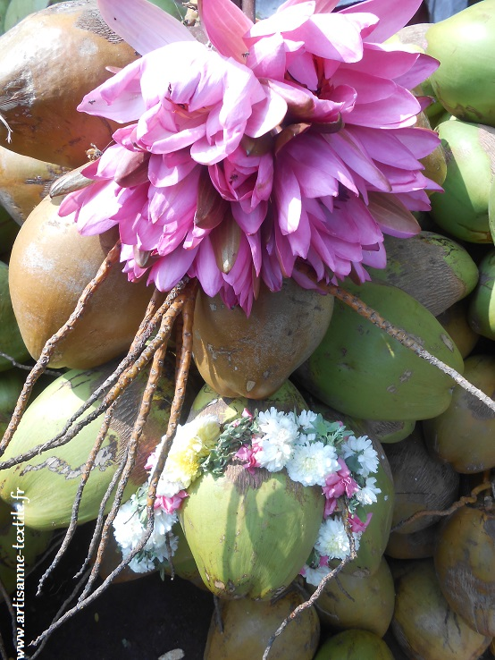 Fleurs en Inde