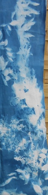 details installation cyanotype Causse 1