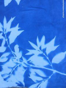 Cyanotype- rebrodé avant broderie