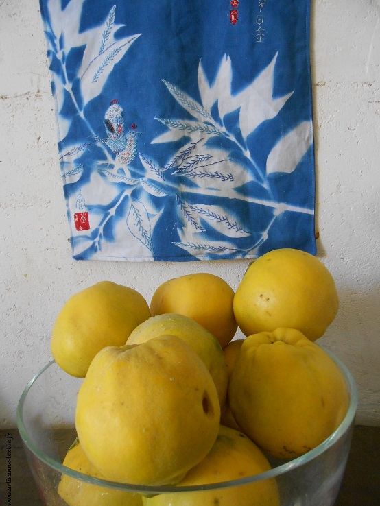 cyanotype rebrodé et coings