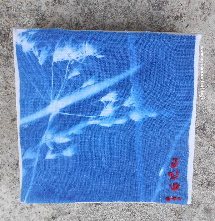 exposition série de 6 cyanotypes sur tissu-1