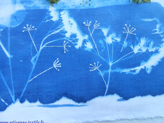 cyanotype détourné: les ombelles brodées ou imprimées