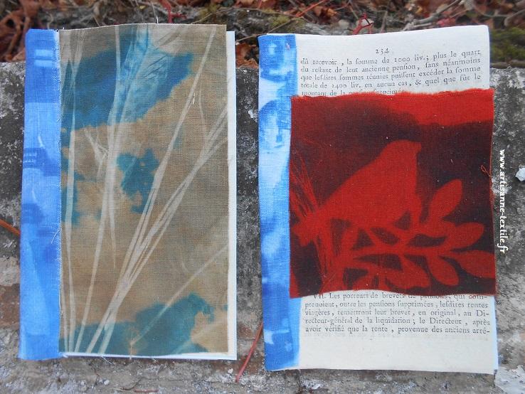 Cyanotype sur tissu et broderie 2