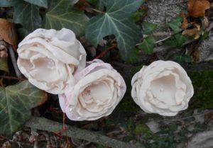 roses blanches en tissu