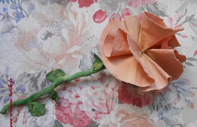 la rose ancienne a reverdi