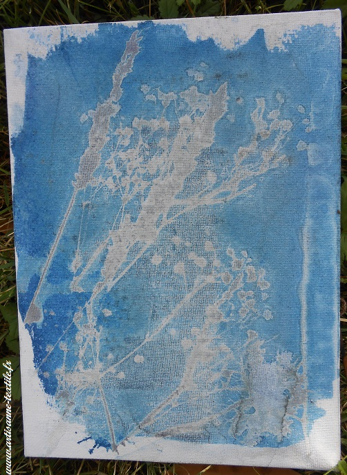 Cyanotype sur toile et chassis