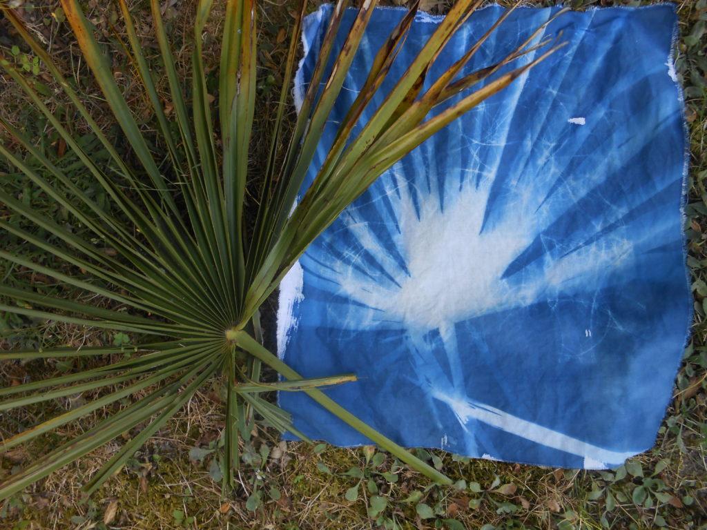 recherche de motifs cyanotypes 4
