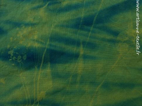 Détail expérimentations -cyanotype