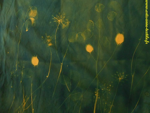 Expérimentations -cyanotype sur fond jaune, on obtient du vert 1