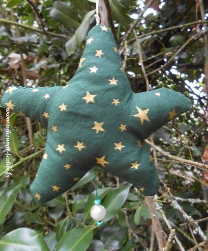 Une étoile de Noël pour un petit prince