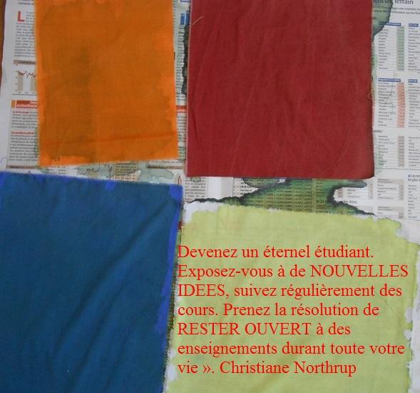 DSCN6105